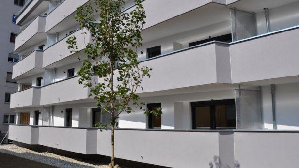 eroeffnung-wohnbau-m5
